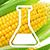 GMO thb