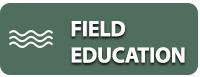 Social work program field education button
