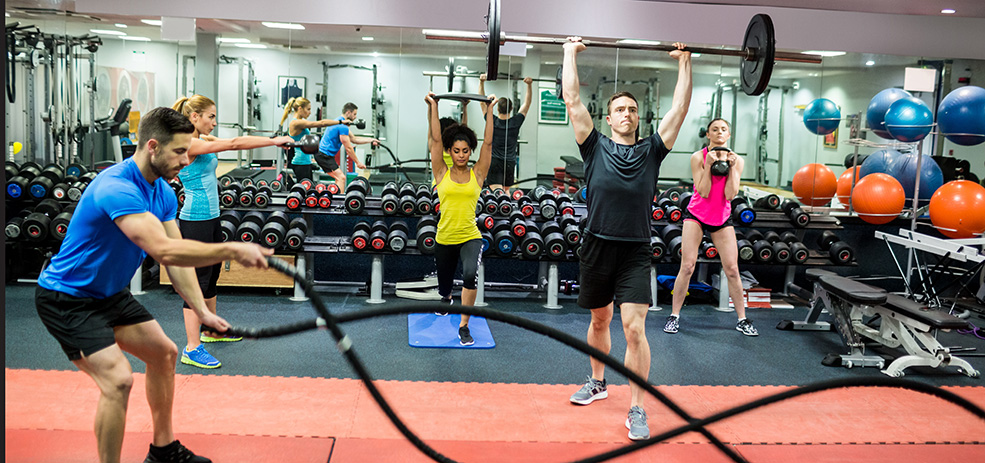 WPC Exercise Science Major - people in the gym