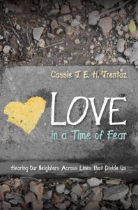 Book Cover for Love in a Time of Fear